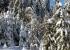 130 Skilift am Seimberg