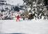 133 Skilift am Seimberg